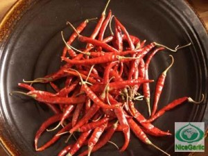Chile from China